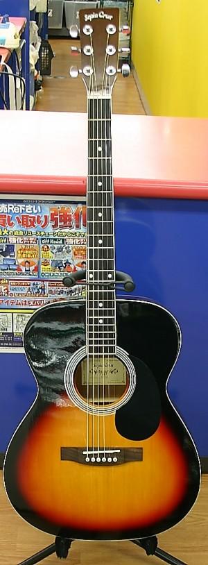 Sepia Crue アコースティックギター FG-1