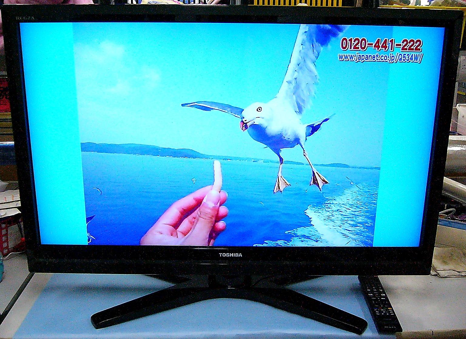 SHARP 液晶テレビ REGZA 42R1