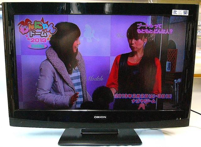 ORION 液晶テレビ DL32-33B