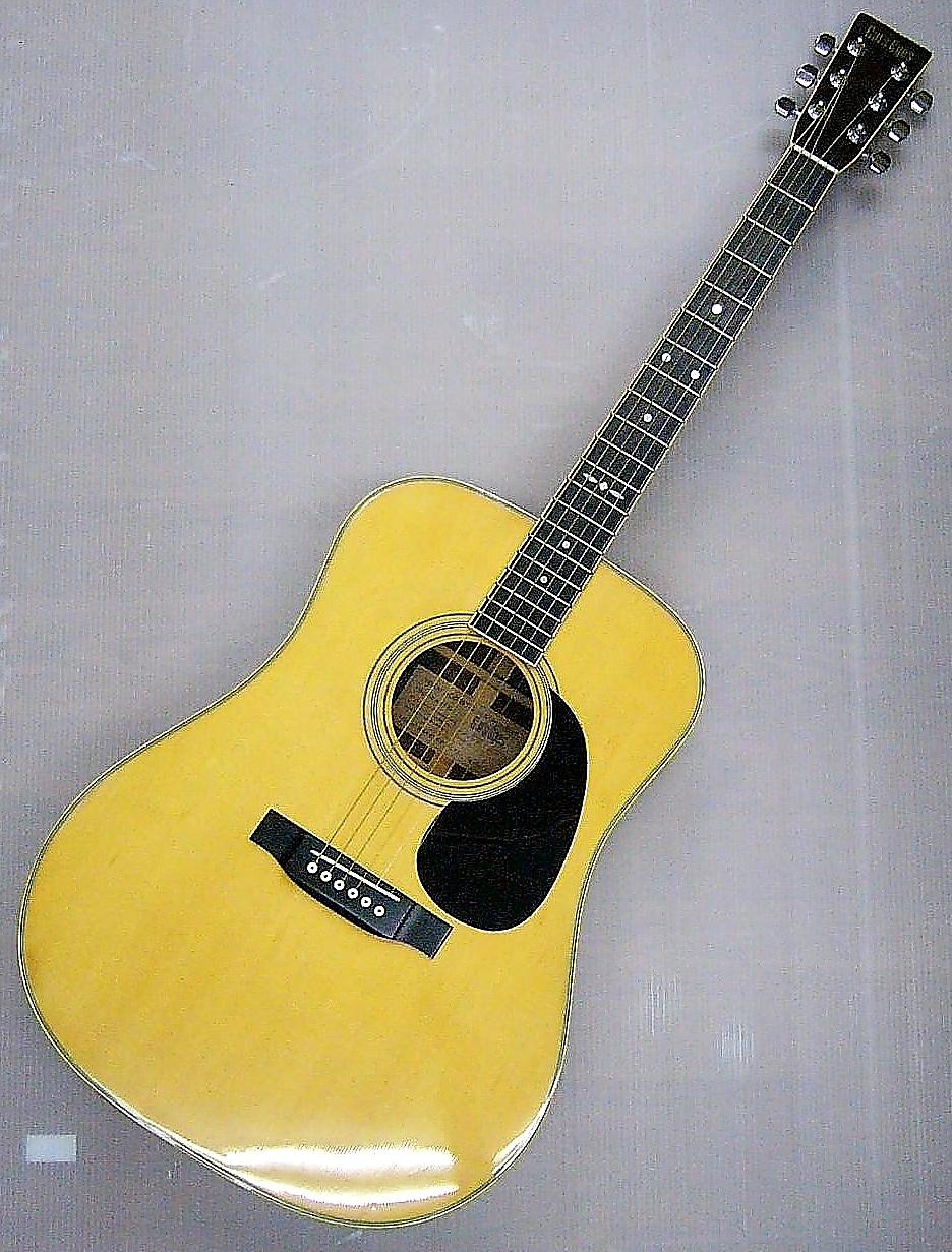 Cats Eyes アコースティックギター CE-250