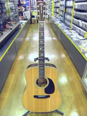 MORRIS アコースティックギター W-50| ハードオフ安城店
