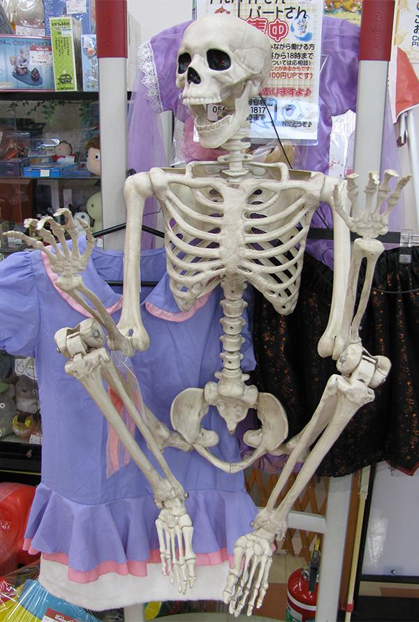 関節が動く『骸骨』| ハードオフ三河安城店