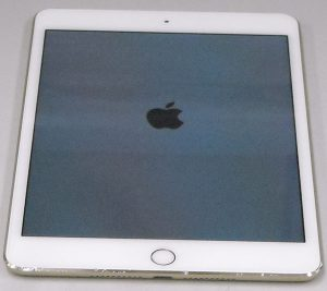 Apple(docomo) iPad mini Wi-Fi Cellular MK712J/A| ハードオフ西尾店