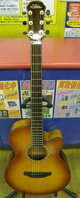 Aria  アコースティックギター TG-1 LVS| ハードオフ安城店